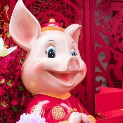 Belle année 2019 Cochon de Terre avec les Ateliers du Bien-ëtre Qi gong et Yoga, Aubenas et Nantes