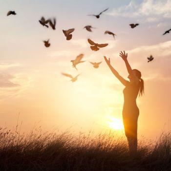 Ayurvéda : une discipline de vie simple pour une santé harmonieuse